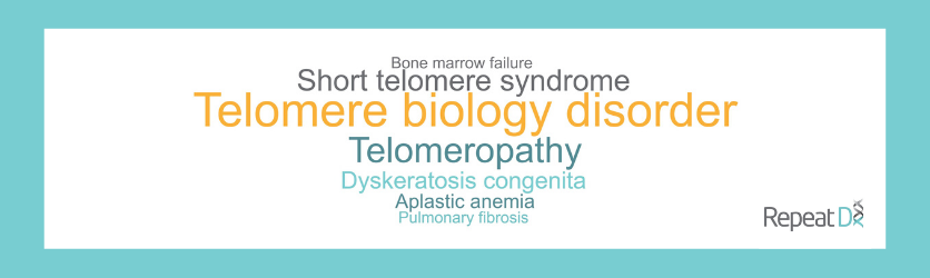 What is Telomere Biology Disorder word cloud