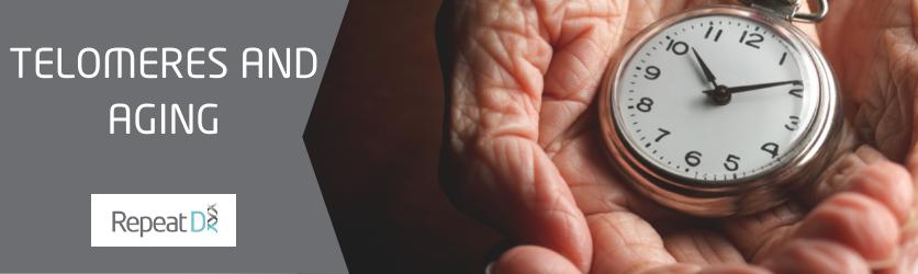 Telomeres and aging blog